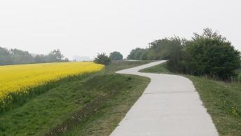 Insel_Ruegen_Ummanz_Radweg