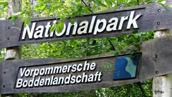 Nationalpark-Vorpommersche-Boddenlandschaft-Ruegen