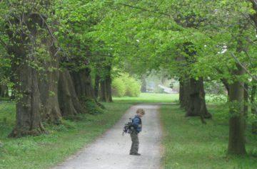 10 Wälder und Parks für Ihren Osterspaziergang