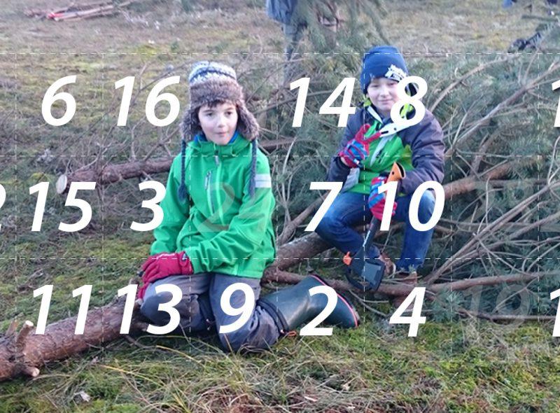 Adventskalender 18. Dezember 2014: Lüttenweihnacht – Weihnachten für die Tiere