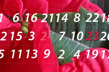 Adventskalender 23. Dezember 2014: Den Weihnachtsstern hab ich so gern