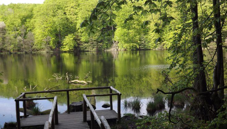 Stille Wasser, sagenhafte Tiefen
