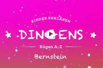 """""""Dingens – Rügen von A bis Z"""":  B wie Bernstein"""