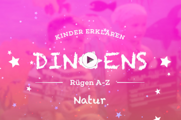 """""""Dingens – Rügen von A bis Z"""": N wie Natur"""