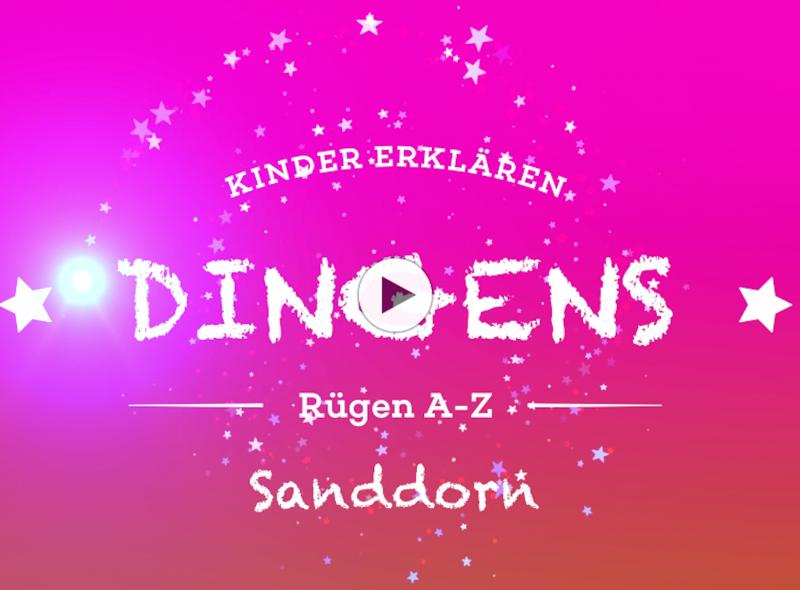 """""""Dingens – Rügen von A bis Z"""": S wie Sanddorn"""