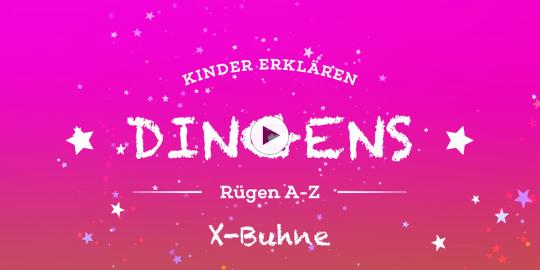 """""""Dingens – Rügen von A bis Z"""": X wie X-Buhne"""