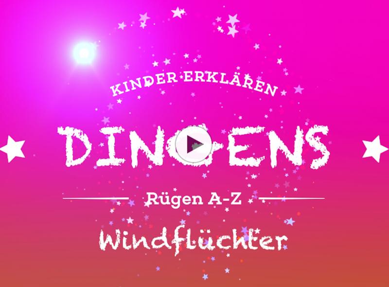 """""""Dingens – Rügen von A bis Z"""": W wie Windflüchter"""