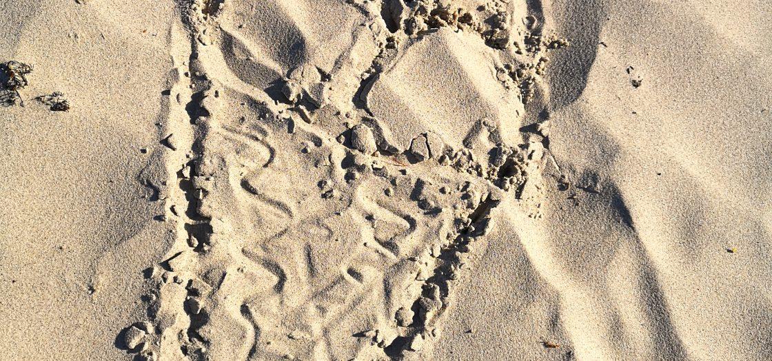 Eis im Sand