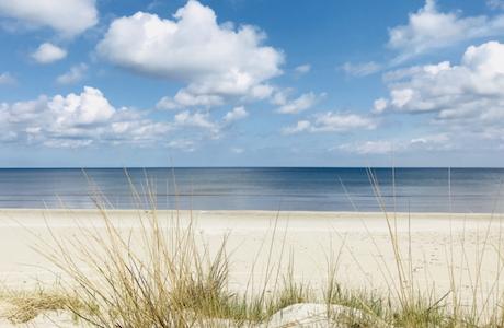 10 Dinge, die man am Strand tun kann – außer baden!