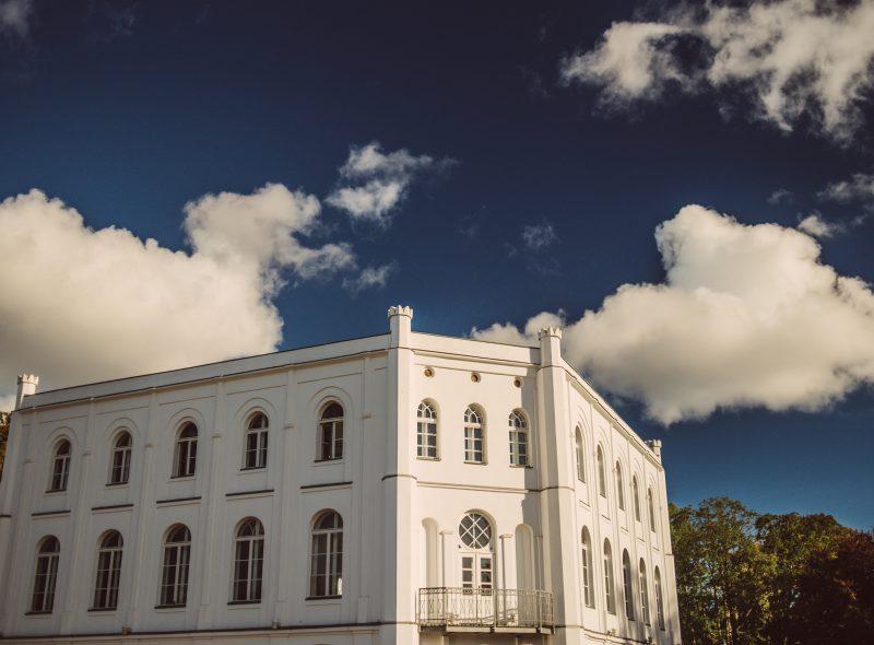 Kunstgalerie CIRCUS EINS in Putbus auf Rügen: Susanne Bumester im Interview
